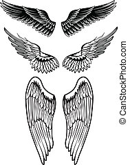 wings - Vector image set wings