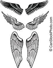 wings - Vector image set wings