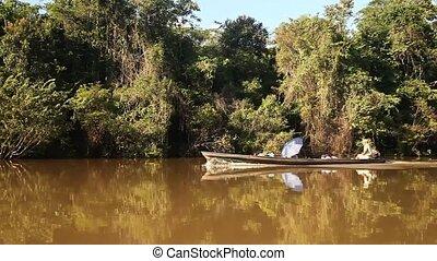 Peque Peque At Amazon River