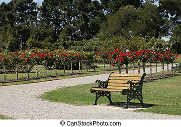 Sitting Bench in The Flower Garden