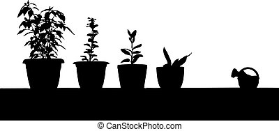 Gardening contour - Vector contour of indoor plants and...