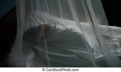 Woman In Tropes With Mosquito Net