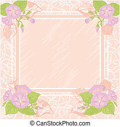 Background with flowers Ipomoea - Pink - white background...