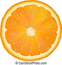 Orange Segment, Isolated On White Background, Vector...