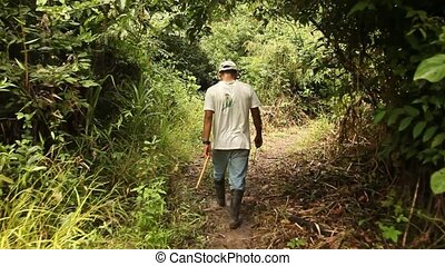Man in Rainforest