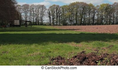 An Irish field in early spring - A cultivated Irish field in...
