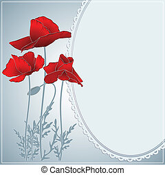 summer poppies and gray frame - summer flowering red poppies...