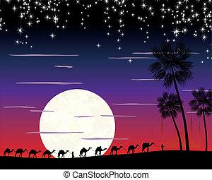 caravan of camels in the desert