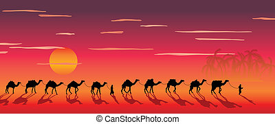 caravan of camels in the desert near the oasis