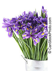 Bouquet of irises - Close-up of a beautiful bouquet of...