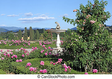 classic italian garden - Pink peonies and roses in italian...