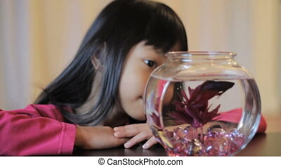 Girl Enjoying Her Red Betta Fish - A cute little 5 year old...