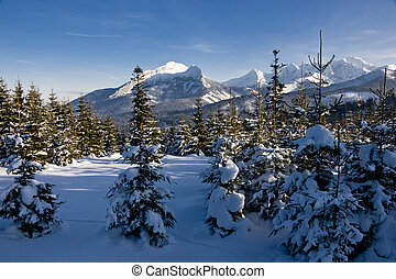 Polish Tatras in winter scenery