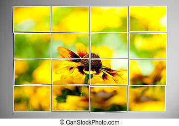 Photo cut into pieces with nature concept