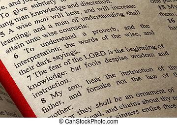 Un, pasaje, libro, proverbios