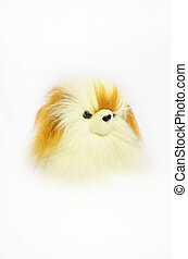 toy dog Pekingese on white background