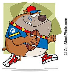 fútbol, marrón, Bulldog, Funcionamiento