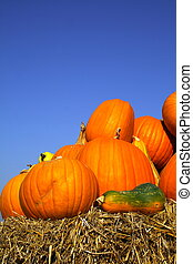Pumpkins on bales of straw (hay) - Several pumpkins on bales...