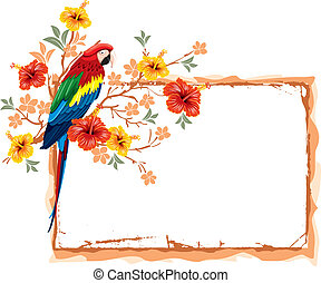 Parrot and tropical flowers - Bright parrots sitting on a...