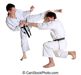 Karate Men in a kimono with a white background Battle sports...