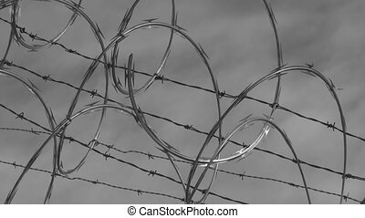 Barbed wire. Timelapse. BW. - Barbed razor wire. Timelapse...