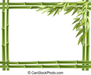 Bamboo frame Vector background with copy space