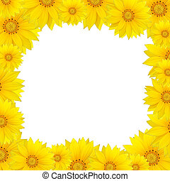 Flowers frame with yellow sunflower isolated on white...