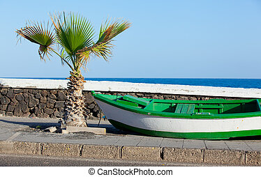 Boat and palm on the coast Lanzarote, Canary, Spaine
