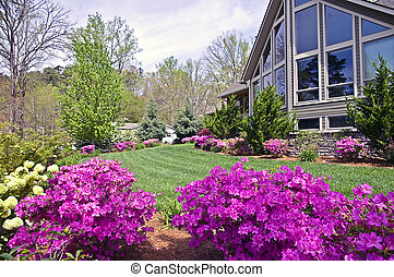 Spring Landscape - The front yard of a modern home showing...