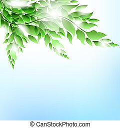 Branch with leaves.Summer vector background