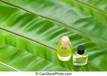 Essential oil on the leaves - Essential oil on the green...