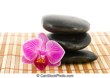 Tropical pink orchid in wellness setting - Tropical pink...