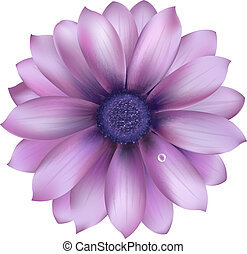 Lilac Flower With Water Drop, Vector Background
