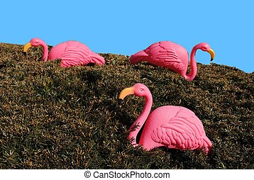 Three Flamingos - Three Pink Flamingos