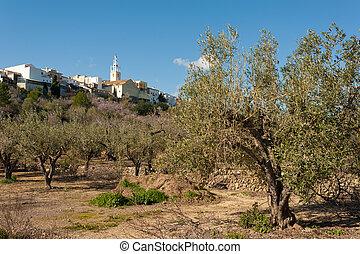 Mediterranean village - Parcent, Costa Blanca, Spain,...