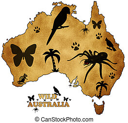 Wild Australia with pictures of animals