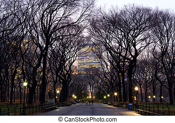 Central Park and Manhattan skyscrapers - Central Park and...