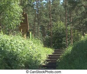 stair resort nature - Stairs toward mountain resort in wild...