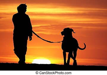 Sunrise Dog Walk - silhouette of a young woman walking her...