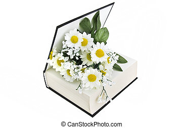 book and daisy on a white background