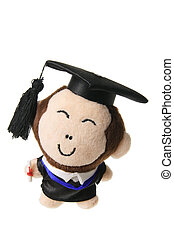 Soft Toy Graduation Monkey on White Background