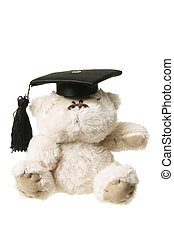 Soft Toy Graduation Bear on White Background