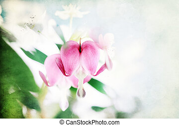 Textured Bleeding Heart - Digital composite of a textured...