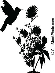 hummingbird with flower silhouette
