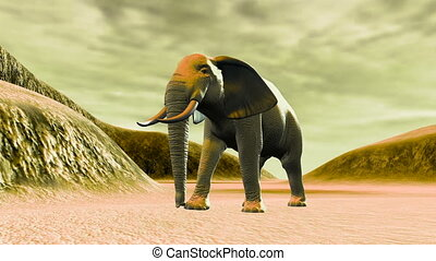 elephant - walking elephant