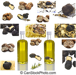 Truffles collage on the white