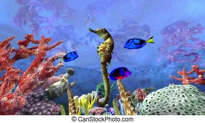 aquarium - image of aquarium