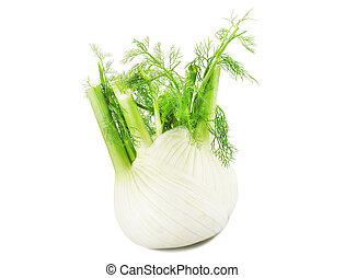 Fennel on the white background