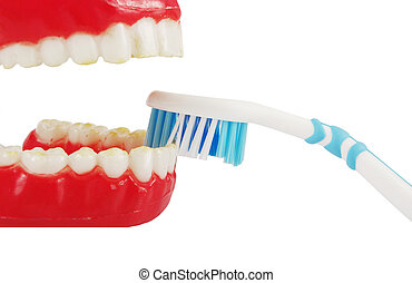closeup of toothbrush and open mouth