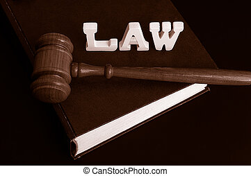 law book, gavel and letters spelling Law